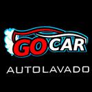 Auto Lavado Go Car